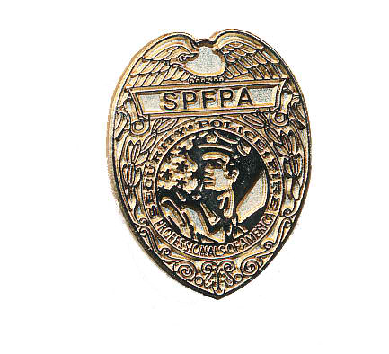 Lapel pin shield